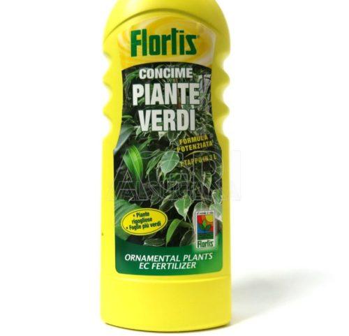 Flortis Piante Verdi