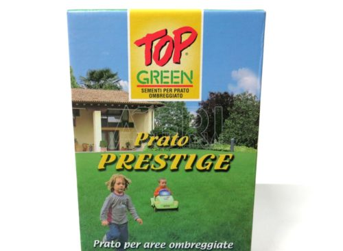 Top Green sementi prestige
