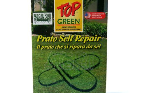 sementi prato selfe Repair kg 1