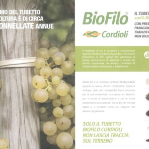 Biofilo legatura mm 2 mt 100