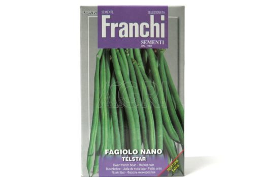 Fagiolino nano anellino telstar gr170