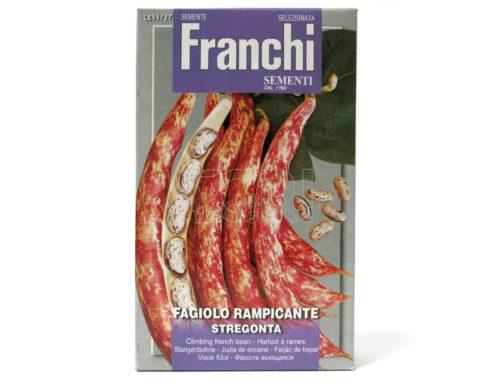 fagiolo borlotto rampicante stregonta gr180