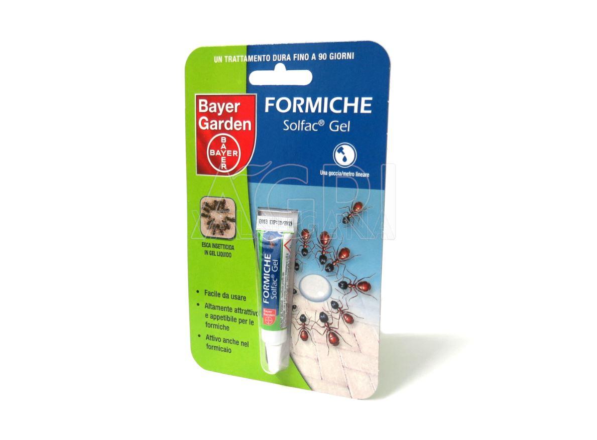 Prodotti Efficaci Contro Le Formiche solfac gel formiche