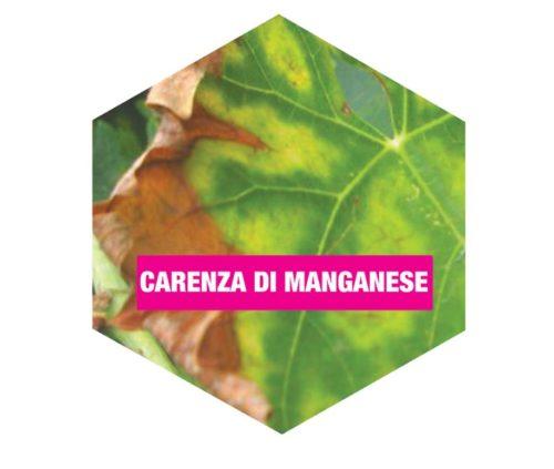 carenza di manganese